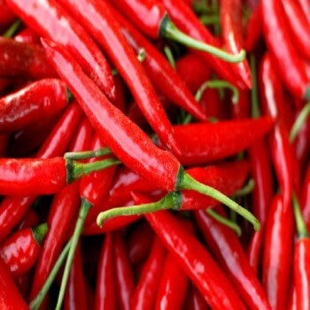 Fresh Red Chili